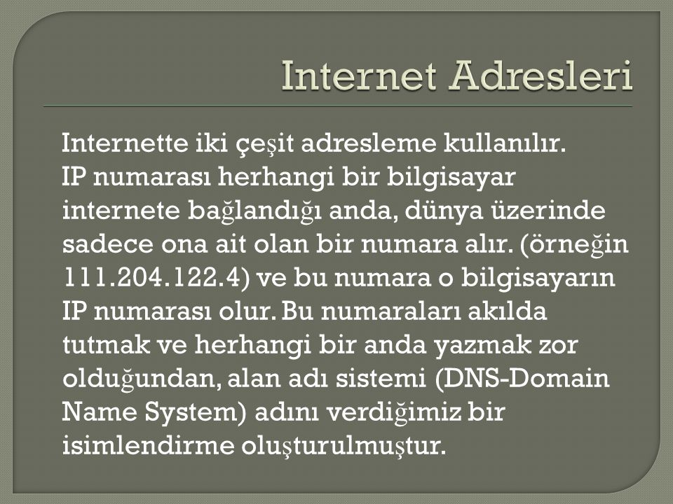 Internette iki çe ş it adresleme kullanılır. IP numarası herhangi bir bilgisayar internete ba ğ landı ğ ı anda, dünya üzerinde sadece ona ait olan bir