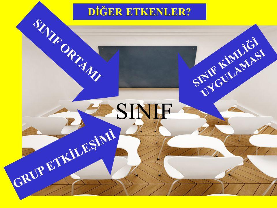 SINIF ORTAMI DİĞER ETKENLER GRUP ETKİLEŞİMİ SINIF SINIF KİMLİĞİ UYGULAMASI