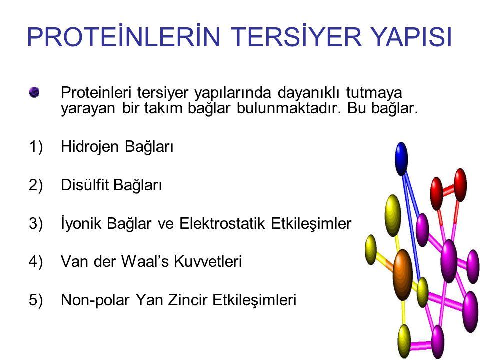 Proteinleri tersiyer yapılarında dayanıklı tutmaya yarayan bir takım bağlar bulunmaktadır. Bu bağlar. 1)Hidrojen Bağları 2)Disülfit Bağları 3)İyonik B