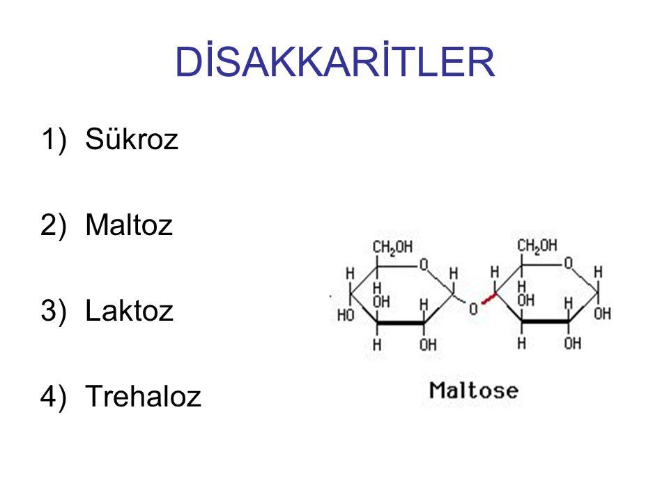 1)Sükroz 2)Maltoz 3)Laktoz 4)Trehaloz DİSAKKARİTLER