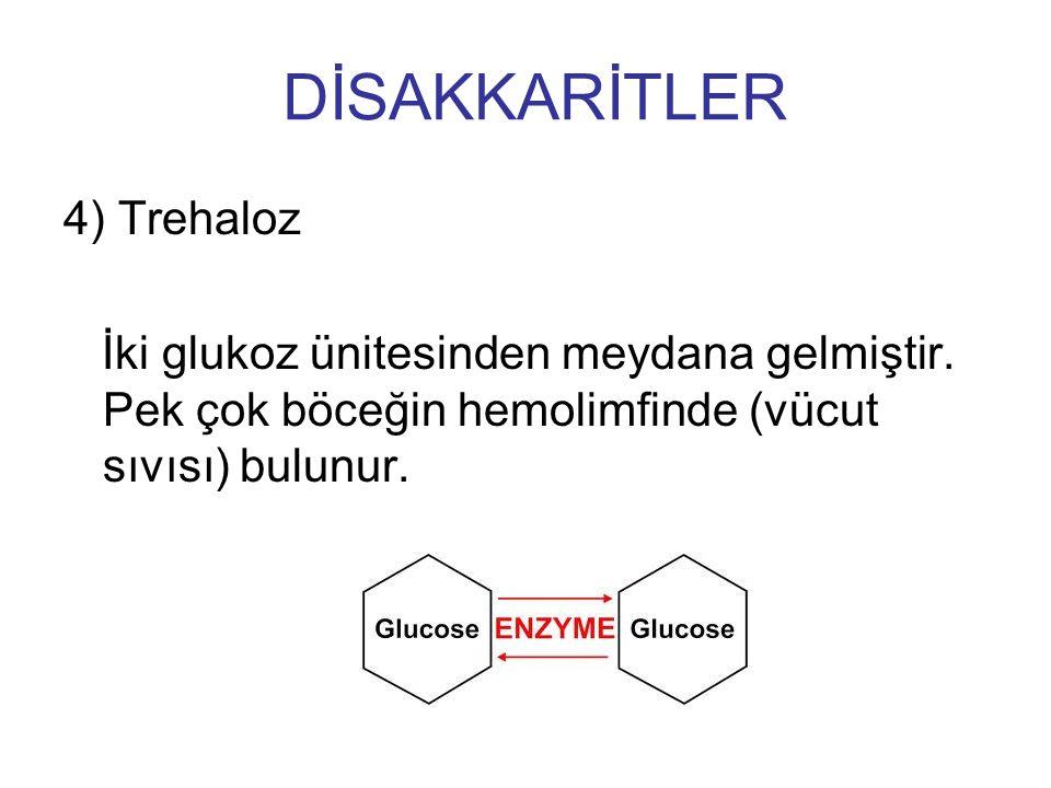4) Trehaloz İki glukoz ünitesinden meydana gelmiştir. Pek çok böceğin hemolimfinde (vücut sıvısı) bulunur. DİSAKKARİTLER
