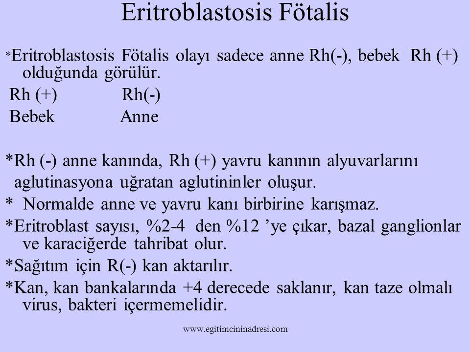 Eritroblastosis Fötalis * Eritroblastosis Fötalis olayı sadece anne Rh(-), bebek Rh (+) olduğunda görülür. Rh (+) Rh(-) Bebek Anne *Rh (-) anne kanınd