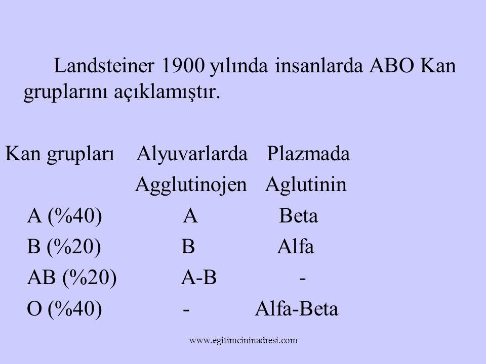 Landsteiner 1900 yılında insanlarda ABO Kan gruplarını açıklamıştır. Kan grupları Alyuvarlarda Plazmada Agglutinojen Aglutinin A (%40) A Beta B (%20)