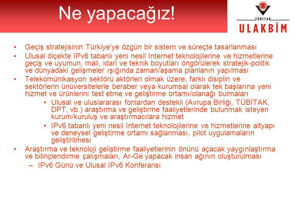 Geçiş stratejisinin Türkiye'ye özgün bir sistem ve süreçte tasarlanması Ulusal ölçekte IPv6 tabanlı yeni nesil Internet teknolojilerine ve hizmetlerin