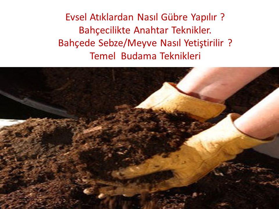 Evsel Atıklardan Nasıl Gübre Yapılır ? Bahçecilikte Anahtar Teknikler. Bahçede Sebze/Meyve Nasıl Yetiştirilir ? Temel Budama Teknikleri