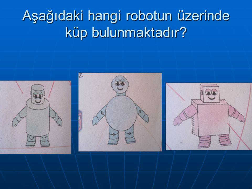 Aşağıdaki hangi robotun üzerinde küp bulunmaktadır?