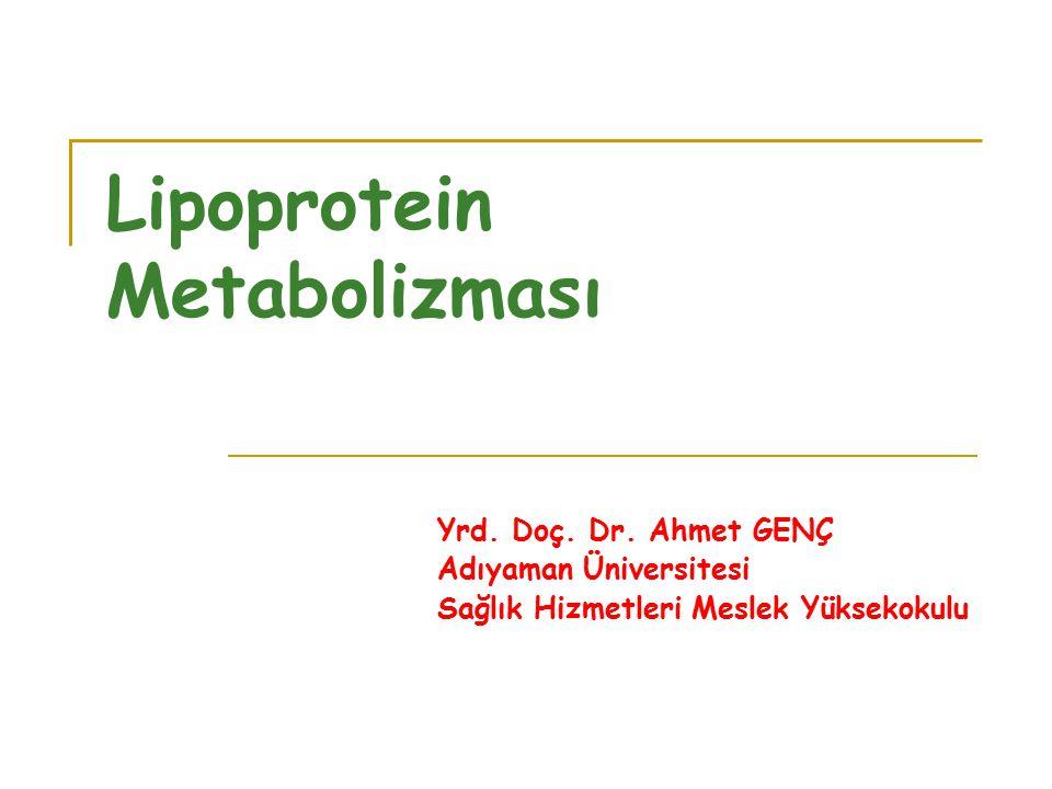 Lipoprotein Metabolizması Yrd. Doç. Dr. Ahmet GENÇ Adıyaman Üniversitesi Sağlık Hizmetleri Meslek Yüksekokulu