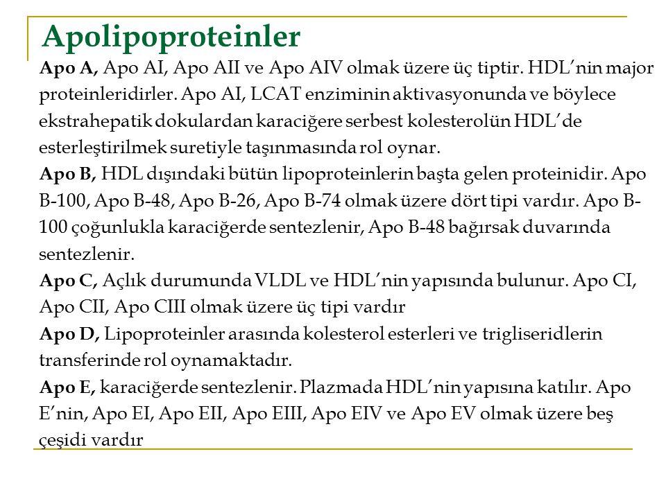  Karaciğerde ve ince bağırsak duvarlarında sentezlenen bir önemli lipoprotein sınıfı HDL'ler dir  Yeni sentezlenen HDL; ApoA-I, ApoA-II, lesitin ve serbest kolesterol içerir.