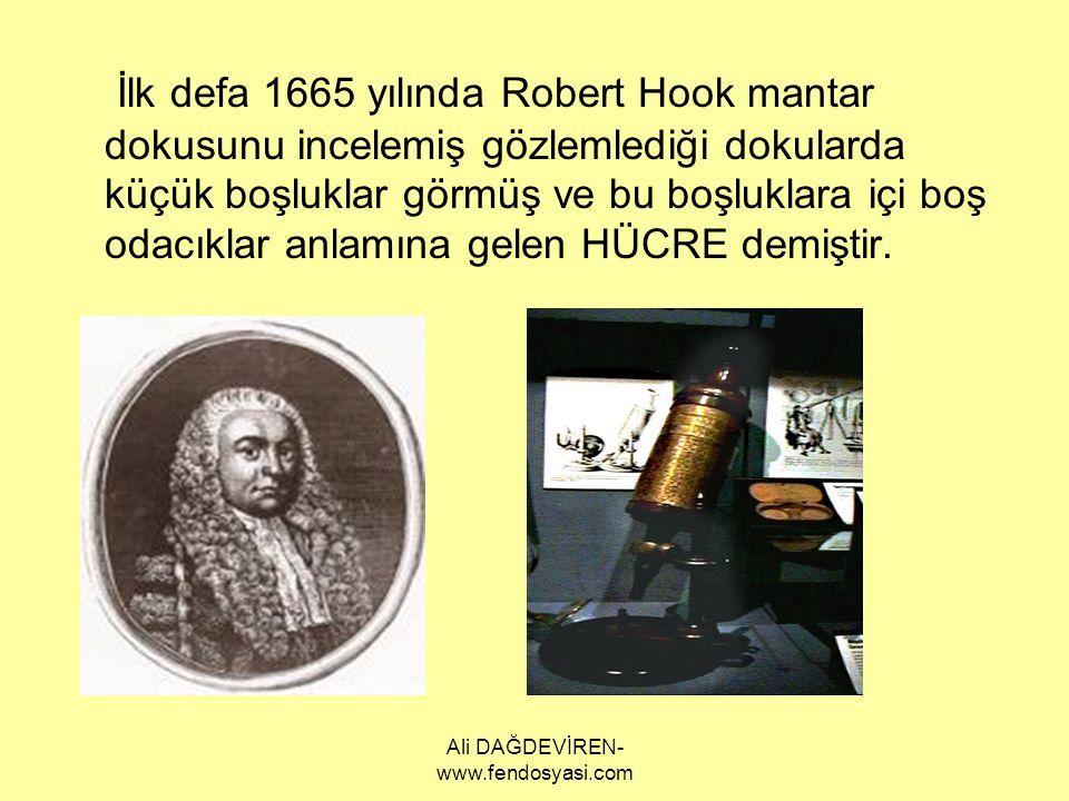 Ali DAĞDEVİREN- www.fendosyasi.com İlk defa 1665 yılında Robert Hook mantar dokusunu incelemiş gözlemlediği dokularda küçük boşluklar görmüş ve bu boş