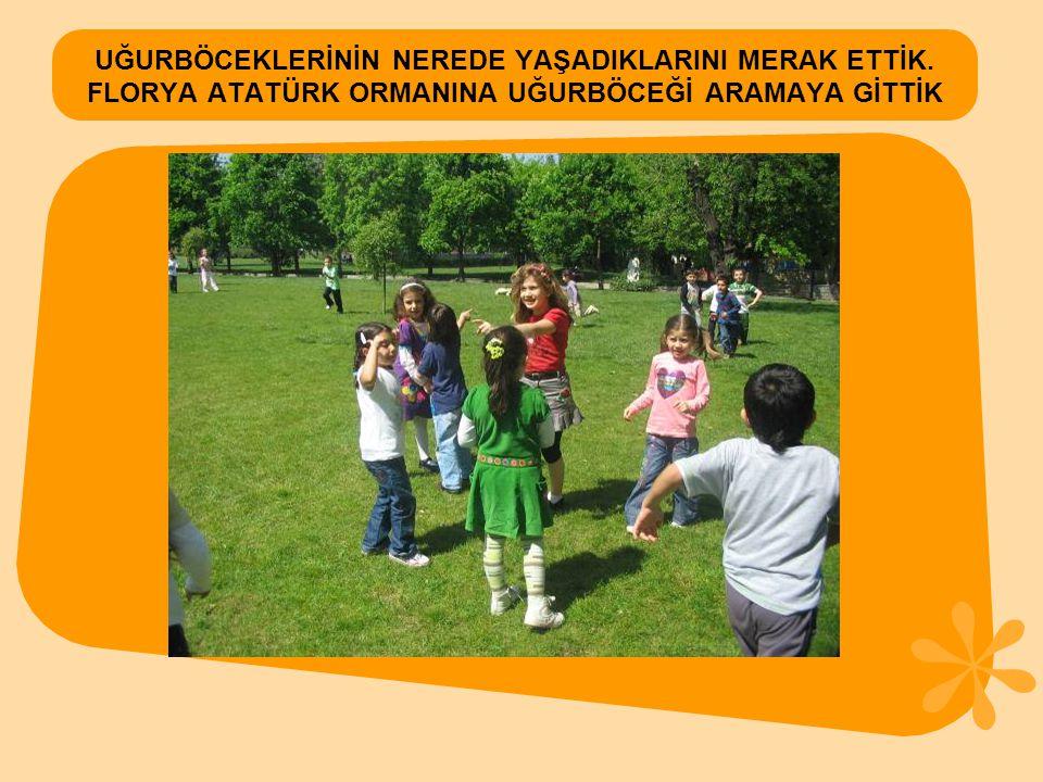 MASKELİ BAHAR PARTİSİ