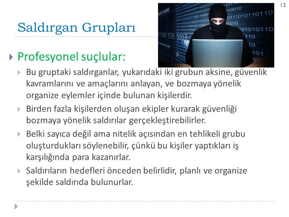 Saldırgan Grupları 13  Profesyonel suçlular:  Bu gruptaki saldırganlar, yukarıdaki iki grubun aksine, güvenlik kavramlarını ve amaçlarını anlayan, v