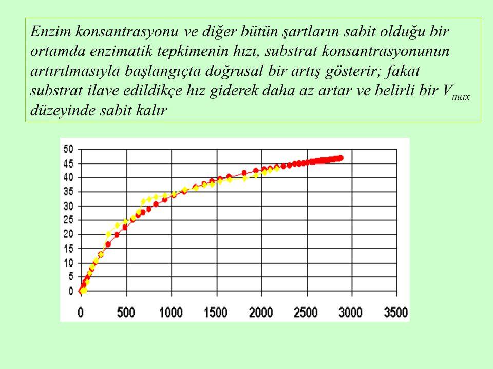 Enzim konsantrasyonu ve diğer bütün şartların sabit olduğu bir ortamda enzimatik tepkimenin hızı, substrat konsantrasyonunun artırılmasıyla başlangıçta doğrusal bir artış gösterir; fakat substrat ilave edildikçe hız giderek daha az artar ve belirli bir V max düzeyinde sabit kalır