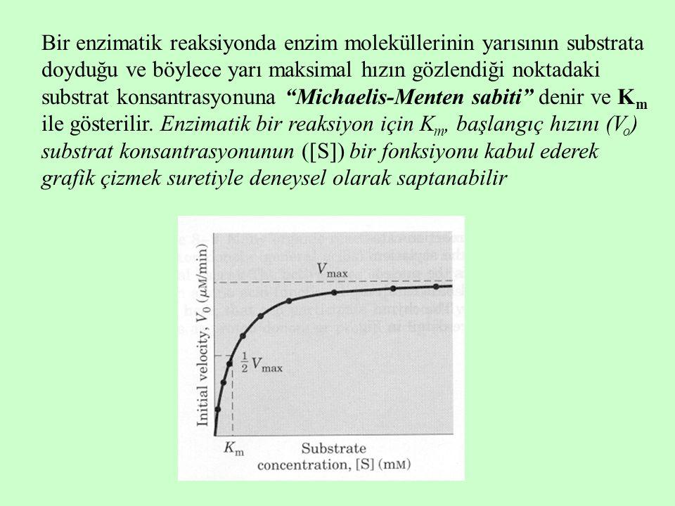 Bir enzimatik reaksiyonda enzim moleküllerinin yarısının substrata doyduğu ve böylece yarı maksimal hızın gözlendiği noktadaki substrat konsantrasyonuna Michaelis-Menten sabiti denir ve K m ile gösterilir.