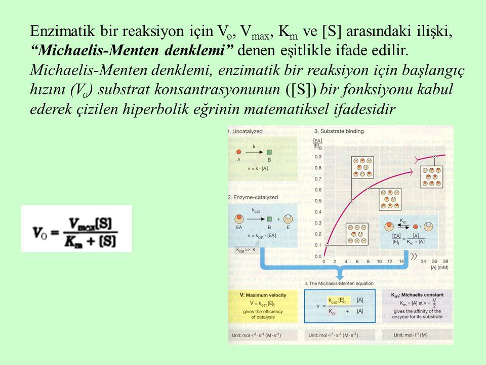 Enzimatik bir reaksiyon için V o, V max, K m ve  S  arasındaki ilişki, Michaelis-Menten denklemi denen eşitlikle ifade edilir.
