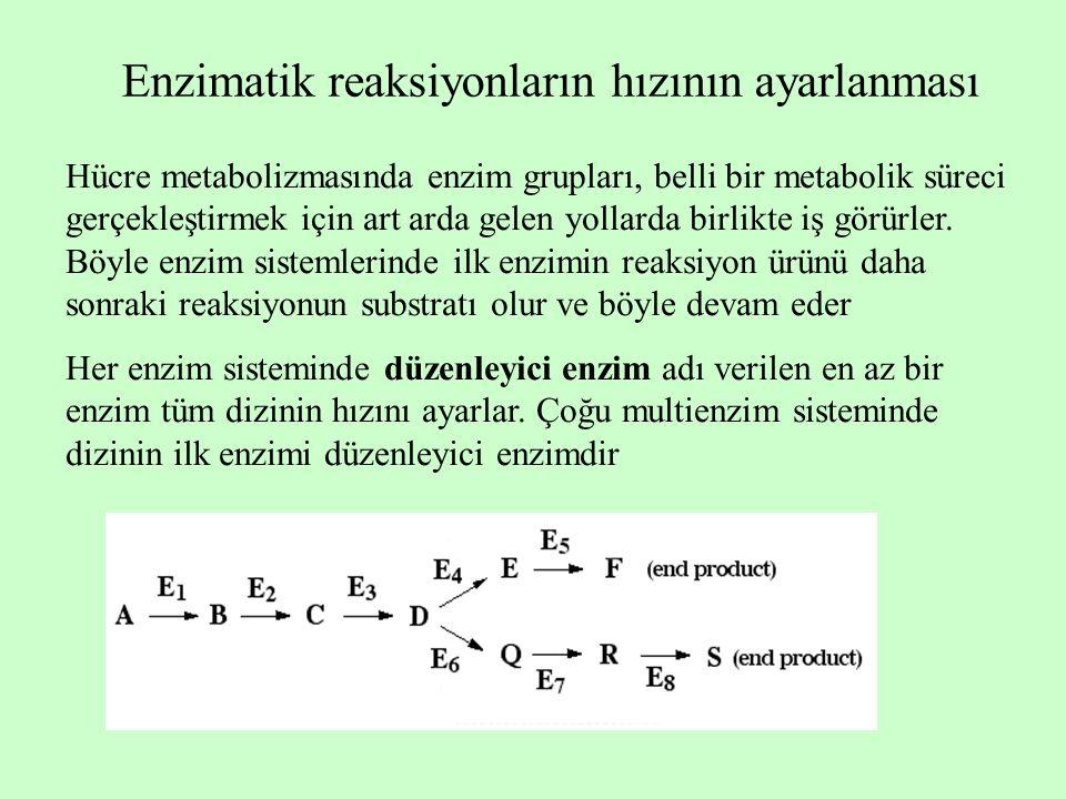 Enzimatik reaksiyonların hızının ayarlanması Hücre metabolizmasında enzim grupları, belli bir metabolik süreci gerçekleştirmek için art arda gelen yollarda birlikte iş görürler.