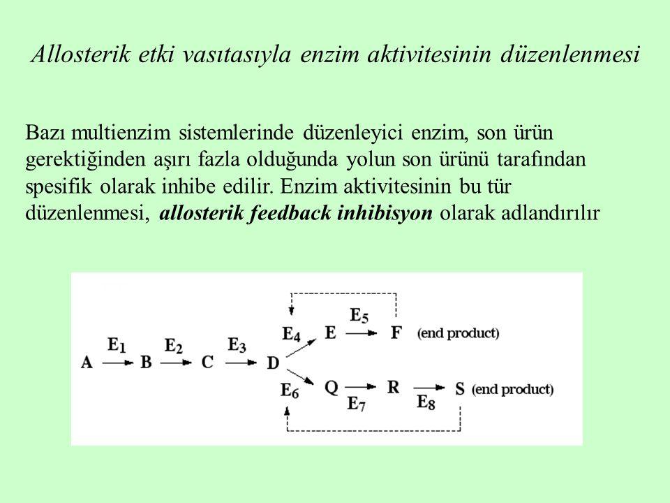 Allosterik etki vasıtasıyla enzim aktivitesinin düzenlenmesi Bazı multienzim sistemlerinde düzenleyici enzim, son ürün gerektiğinden aşırı fazla olduğunda yolun son ürünü tarafından spesifik olarak inhibe edilir.