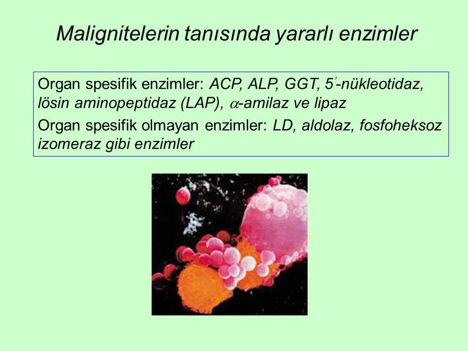 Malignitelerin tanısında yararlı enzimler Organ spesifik enzimler: ACP, ALP, GGT, 5-nükleotidaz, lösin aminopeptidaz (LAP),  -amilaz ve lipaz Organ spesifik olmayan enzimler: LD, aldolaz, fosfoheksoz izomeraz gibi enzimler