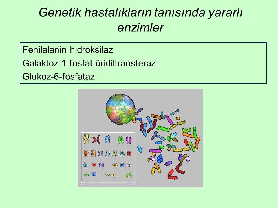 Genetik hastalıkların tanısında yararlı enzimler Fenilalanin hidroksilaz Galaktoz-1-fosfat üridiltransferaz Glukoz-6-fosfataz