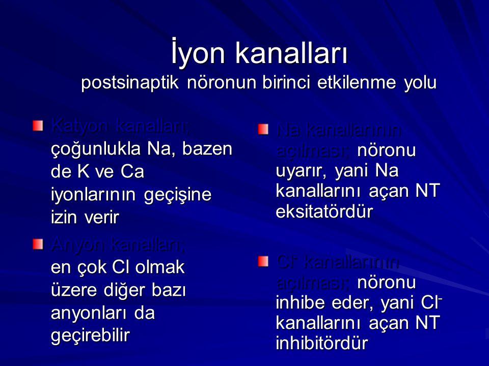 İyon kanalları postsinaptik nöronun birinci etkilenme yolu Katyon kanalları; çoğunlukla Na, bazen de K ve Ca iyonlarının geçişine izin verir Anyon kan