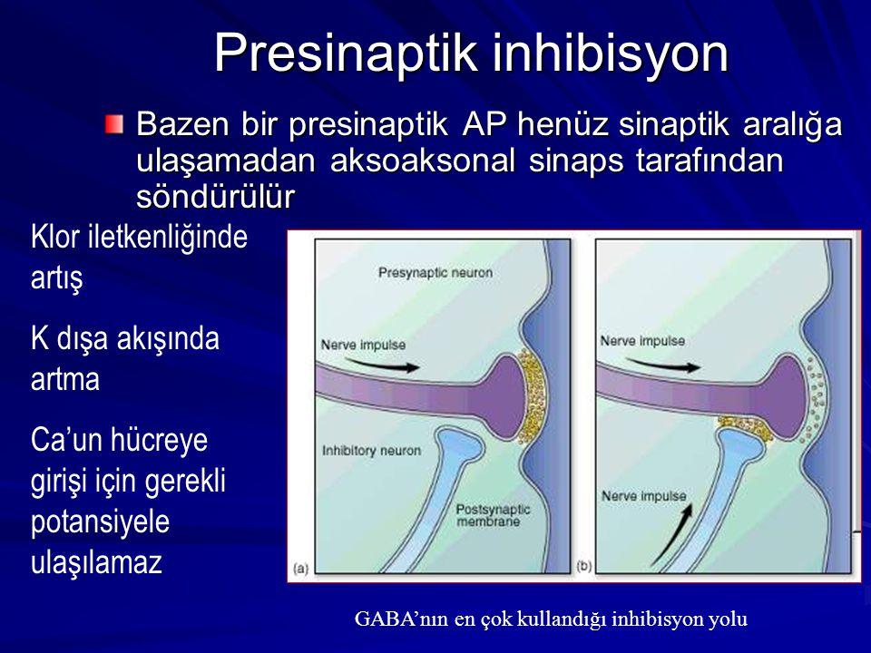 Presinaptik inhibisyon Bazen bir presinaptik AP henüz sinaptik aralığa ulaşamadan aksoaksonal sinaps tarafından söndürülür Klor iletkenliğinde artış K dışa akışında artma Ca'un hücreye girişi için gerekli potansiyele ulaşılamaz GABA'nın en çok kullandığı inhibisyon yolu
