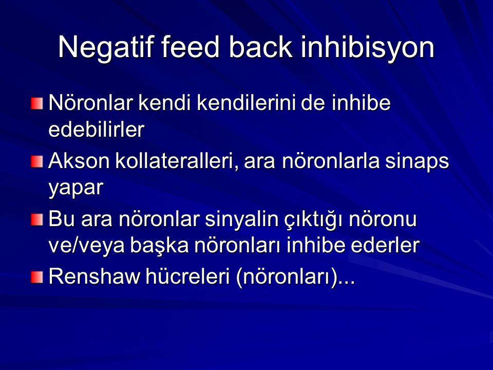 Negatif feed back inhibisyon Nöronlar kendi kendilerini de inhibe edebilirler Akson kollateralleri, ara nöronlarla sinaps yapar Bu ara nöronlar sinyalin çıktığı nöronu ve/veya başka nöronları inhibe ederler Renshaw hücreleri (nöronları)...