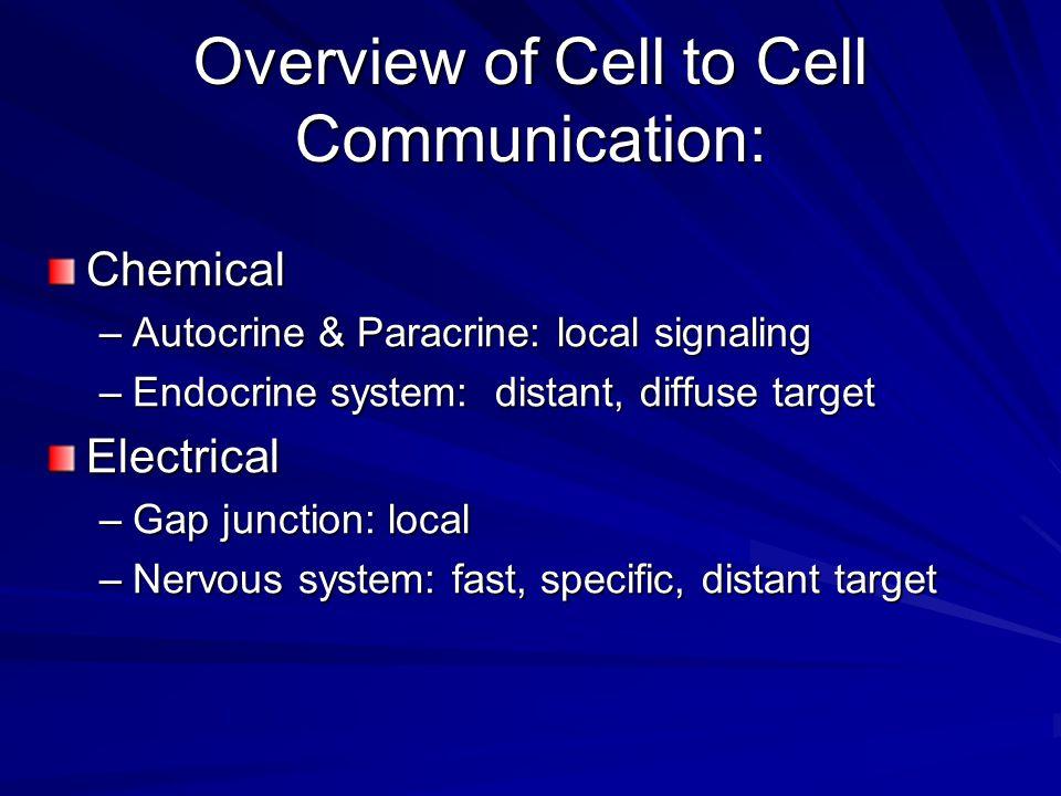 İyon kanalları postsinaptik nöronun birinci etkilenme yolu Katyon kanalları; çoğunlukla Na, bazen de K ve Ca iyonlarının geçişine izin verir Anyon kanalları; en çok Cl olmak üzere diğer bazı anyonları da geçirebilir Na kanallarının açılması; nöronu uyarır, yani Na kanallarını açan NT eksitatördür Cl - kanallarının açılması; nöronu inhibe eder, yani Cl - kanallarını açan NT inhibitördür