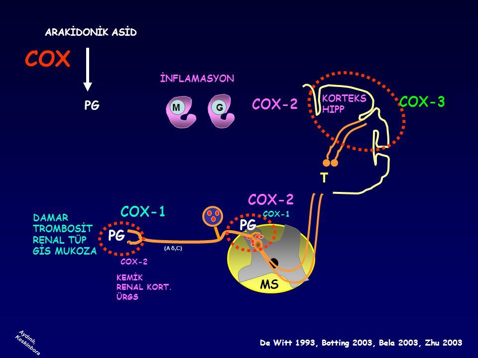 T (A δ,C) Aydınlı, Keskinbora COX-1 COX-2 COX-3 GM DAMAR TROMBOSİT RENAL TÜP GİS MUKOZA KEMİK RENAL KORT. ÜRGS KORTEKS HIPP COX-2 COX-1 COX-2 MS COX D