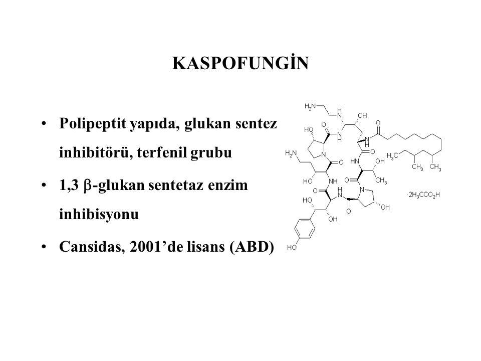 Polipeptit yapıda, glukan sentez inhibitörü, terfenil grubu 1,3  -glukan sentetaz enzim inhibisyonu Cansidas, 2001'de lisans (ABD) KASPOFUNGİN