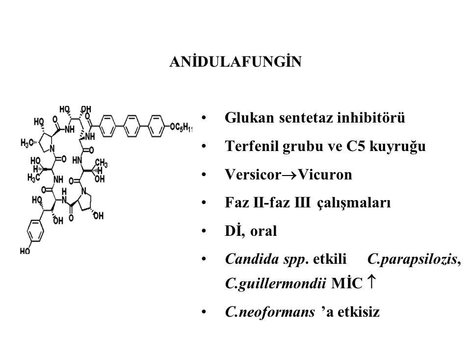 Glukan sentetaz inhibitörü Terfenil grubu ve C5 kuyruğu Versicor  Vicuron Faz II-faz III çalışmaları Dİ, oral Candida spp. etkili C.parapsilozis, C.g