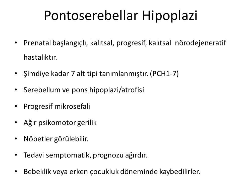 Pontoserebellar Hipoplazi Prenatal başlangıçlı, kalıtsal, progresif, kalıtsal nörodejeneratif hastalıktır. Şimdiye kadar 7 alt tipi tanımlanmıştır. (P