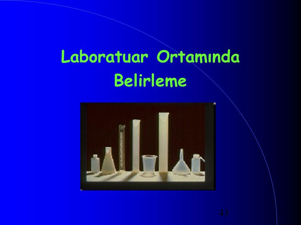 43 Laboratuar Ortamında Belirleme