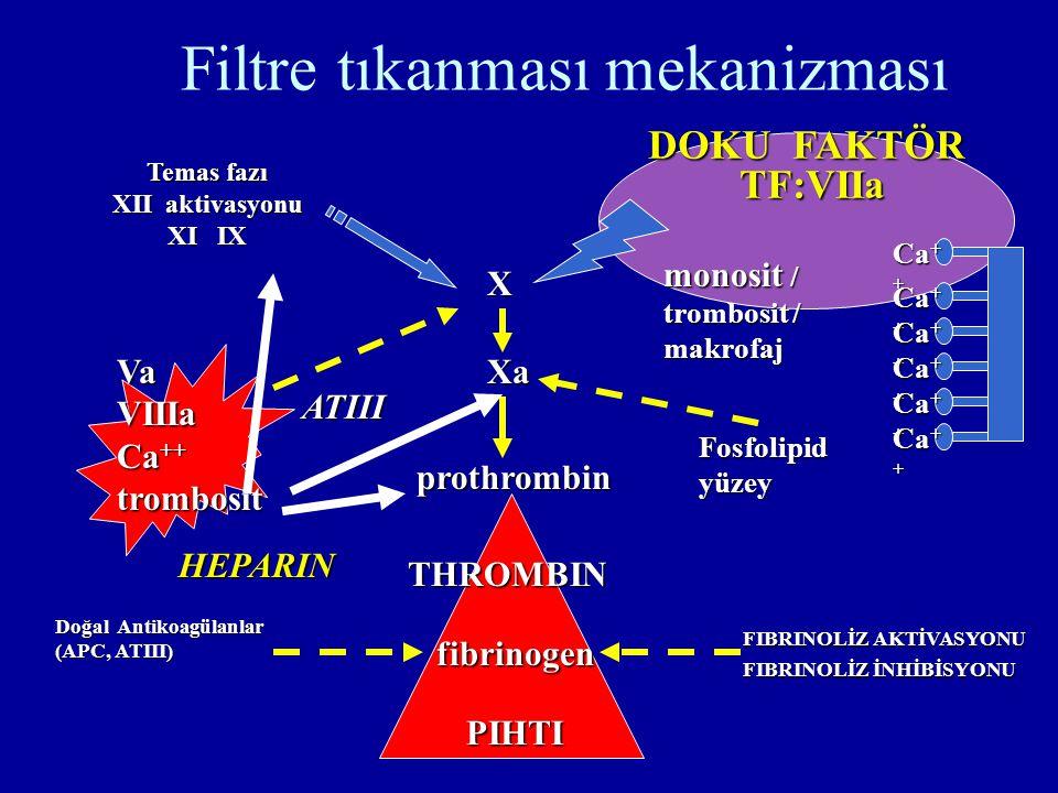 Filtre tıkanması mekanizması Temas fazı XII aktivasyonu XI IX DOKU FAKTÖR TF:VIIa THROMBIN fibrinogen prothrombin XaVaVIIIa Ca ++ trombosit PIHTI mono