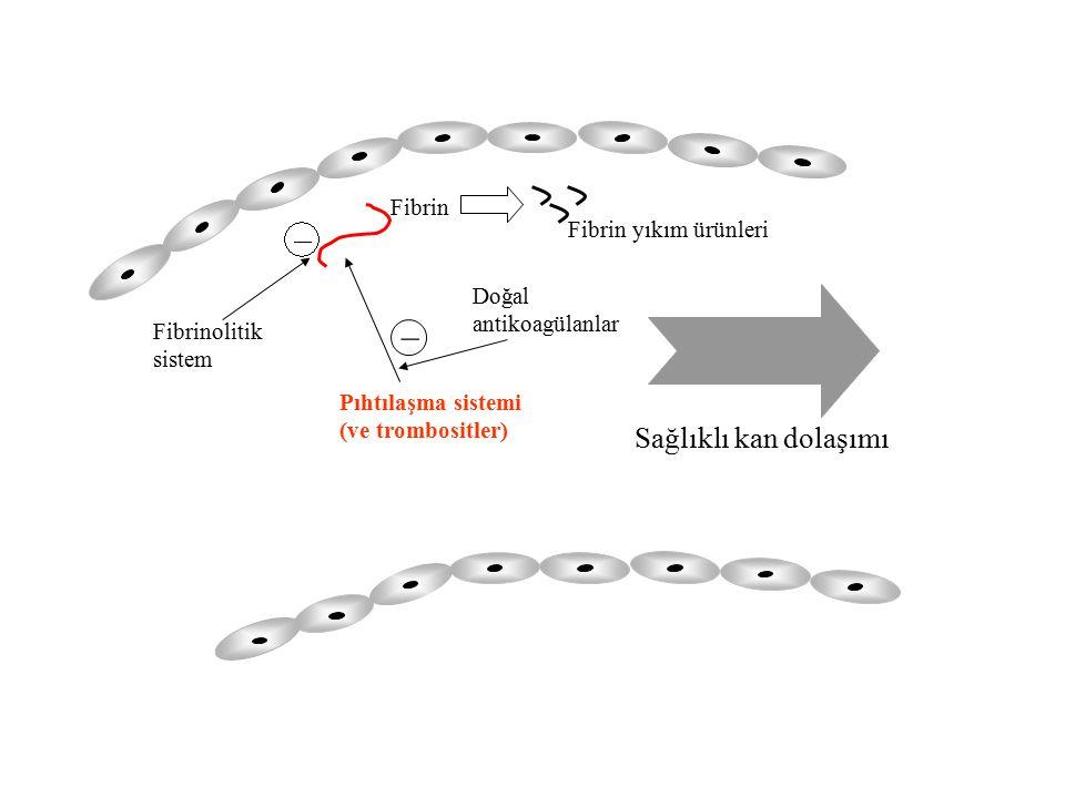 Pıhtılaşma sistemi (ve trombositler) Fibrin _ Fibrin yıkım ürünleri Sağlıklı kan dolaşımı Fibrinolitik sistem Doğal antikoagülanlar