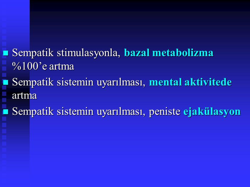 Sempatik stimulasyonla, bazal metabolizma %100'e artma Sempatik stimulasyonla, bazal metabolizma %100'e artma Sempatik sistemin uyarılması, mental aktivitede artma Sempatik sistemin uyarılması, mental aktivitede artma Sempatik sistemin uyarılması, peniste ejakülasyon Sempatik sistemin uyarılması, peniste ejakülasyon