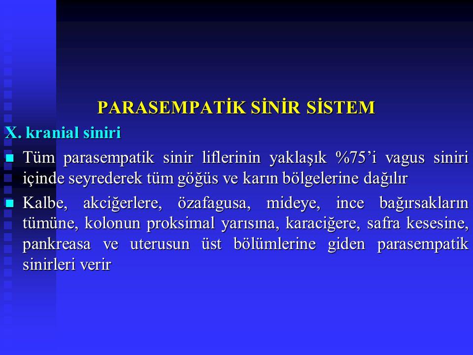 PARASEMPATİK SİNİR SİSTEM X.