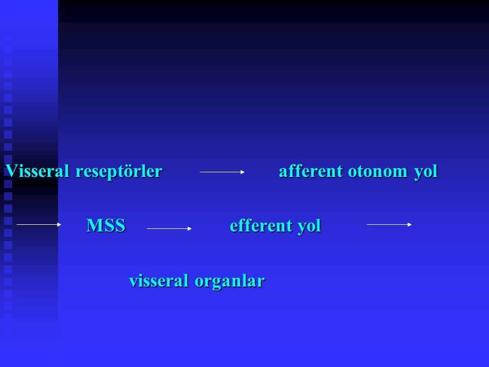 OTONOM VE SOMATİK SİSTEMLERİN KARŞILAŞTIRILMASI Somatik motor nöronların hücre gövdeleri MSS'de ve miyelinli aksonları doğrudan iskelet kaslarına Somatik motor nöronların hücre gövdeleri MSS'de ve miyelinli aksonları doğrudan iskelet kaslarına Otonom sinirler MSS'den çıkan aksonları yolları üzerinde mutlaka MSS dışındaki bir gangliyonda sonlanır; pregangliyonik aksonlar miyelinli, postgangliyonikler ise miyelinsiz Otonom sinirler MSS'den çıkan aksonları yolları üzerinde mutlaka MSS dışındaki bir gangliyonda sonlanır; pregangliyonik aksonlar miyelinli, postgangliyonikler ise miyelinsiz
