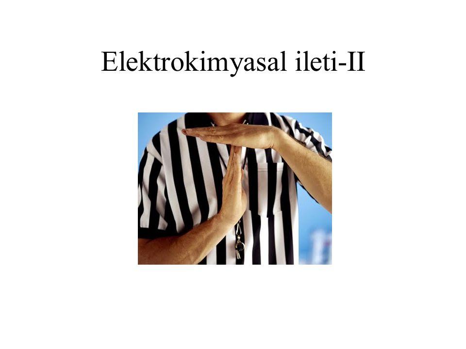 Elektrokimyasal ileti-II