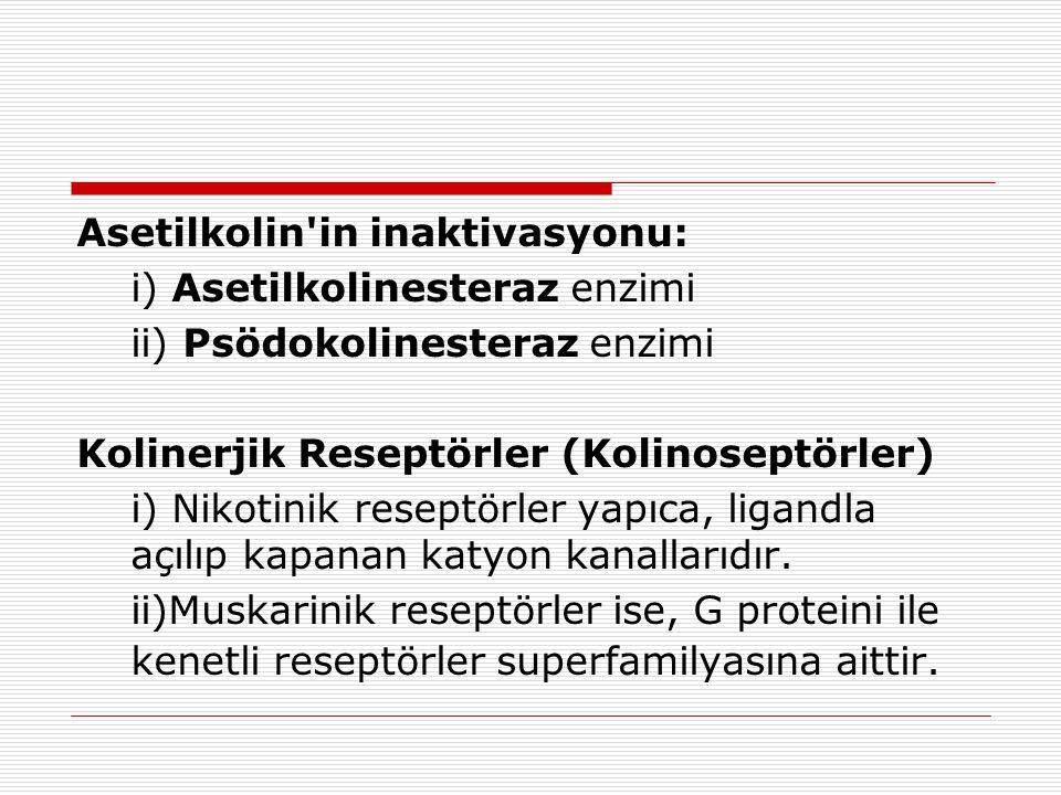 Asetilkolin'in inaktivasyonu: i) Asetilkolinesteraz enzimi ii) Psödokolinesteraz enzimi Kolinerjik Reseptörler (Kolinoseptörler) i) Nikotinik reseptör