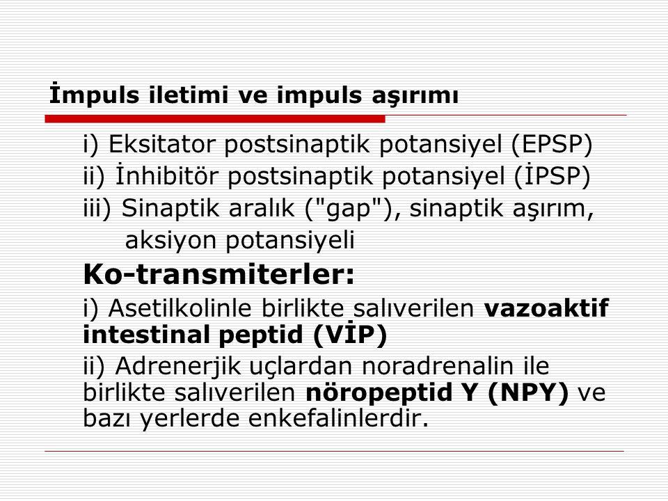 İmpuls iletimi ve impuls aşırımı i) Eksitator postsinaptik potansiyel (EPSP) ii) İnhibitör postsinaptik potansiyel (İPSP) iii) Sinaptik aralık (