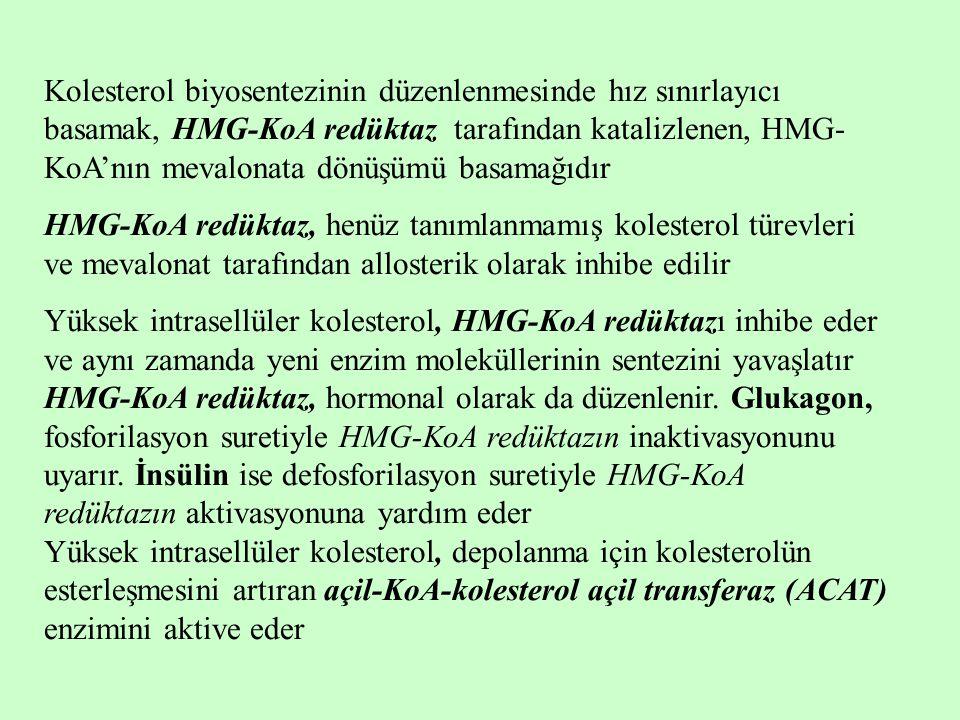 Kolesterol biyosentezinin düzenlenmesinde hız sınırlayıcı basamak, HMG-KoA redüktaz tarafından katalizlenen, HMG- KoA'nın mevalonata dönüşümü basamağı