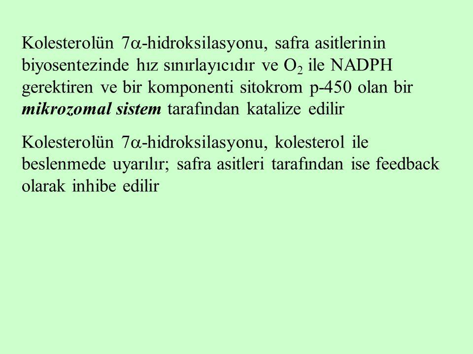 Kolesterolün 7  -hidroksilasyonu, safra asitlerinin biyosentezinde hız sınırlayıcıdır ve O 2 ile NADPH gerektiren ve bir komponenti sitokrom p-450 ol