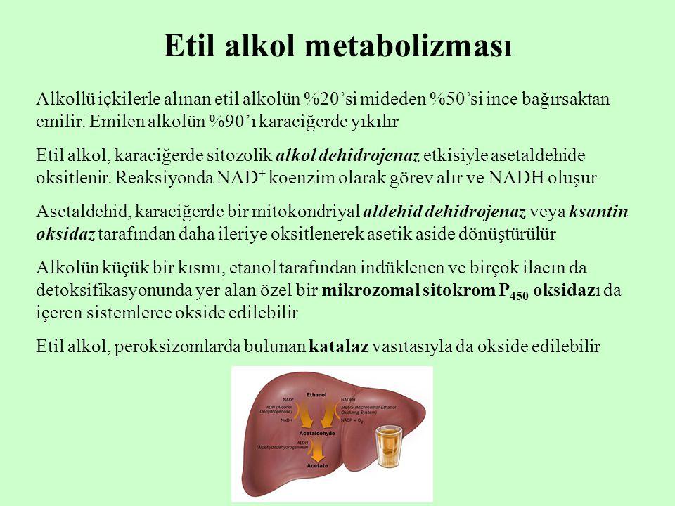 Etil alkol metabolizması Alkollü içkilerle alınan etil alkolün %20'si mideden %50'si ince bağırsaktan emilir. Emilen alkolün %90'ı karaciğerde yıkılır