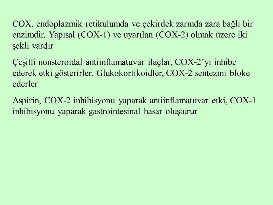 COX, endoplazmik retikulumda ve çekirdek zarında zara bağlı bir enzimdir. Yapısal (COX-1) ve uyarılan (COX-2) olmak üzere iki şekli vardır Çeşitli non