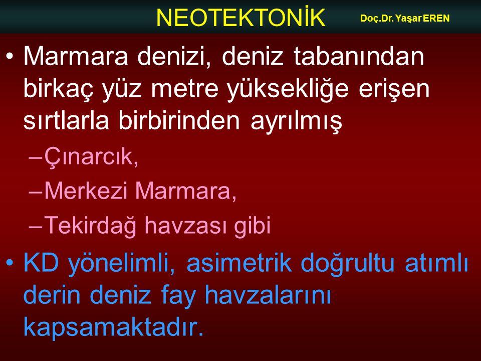 NEOTEKTONİK Doç.Dr. Yaşar EREN Marmara denizi, deniz tabanından birkaç yüz metre yüksekliğe erişen sırtlarla birbirinden ayrılmış –Çınarcık, –Merkezi