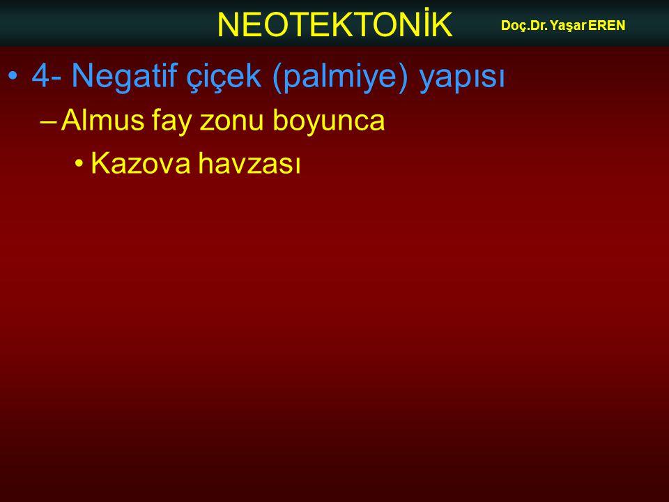 NEOTEKTONİK Doç.Dr. Yaşar EREN 4- Negatif çiçek (palmiye) yapısı –Almus fay zonu boyunca Kazova havzası