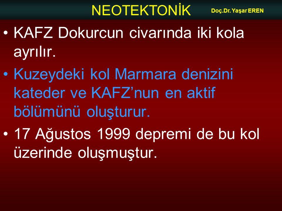 NEOTEKTONİK Doç.Dr. Yaşar EREN KAFZ Dokurcun civarında iki kola ayrılır. Kuzeydeki kol Marmara denizini kateder ve KAFZ'nun en aktif bölümünü oluşturu