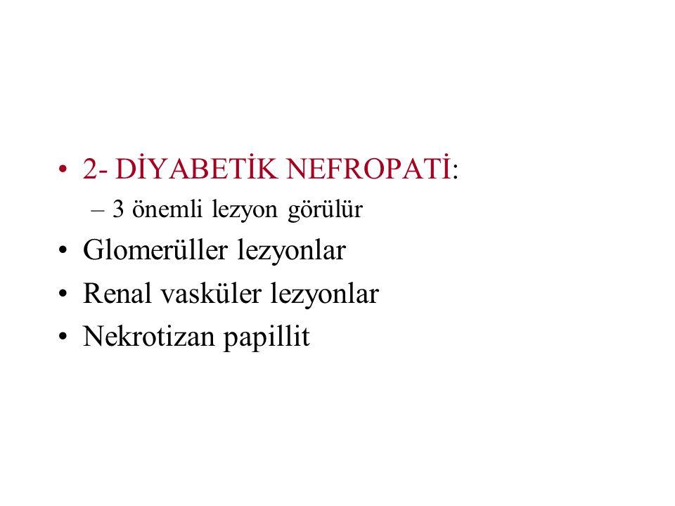 2- DİYABETİK NEFROPATİ: –3 önemli lezyon görülür Glomerüller lezyonlar Renal vasküler lezyonlar Nekrotizan papillit