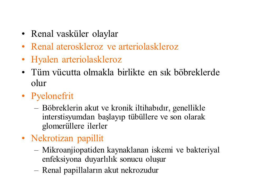 Renal vasküler olaylar Renal ateroskleroz ve arteriolaskleroz Hyalen arteriolaskleroz Tüm vücutta olmakla birlikte en sık böbreklerde olur Pyelonefrit