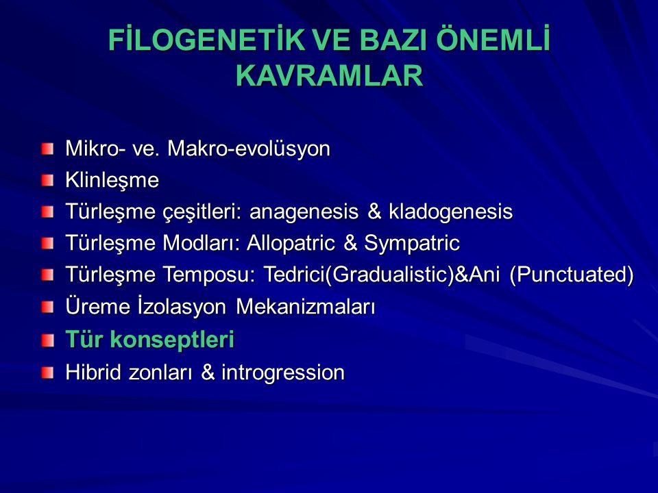 FİLOGENETİK VE BAZI ÖNEMLİ KAVRAMLAR Mikro- ve. Makro-evolüsyon Klinleşme Türleşme çeşitleri: anagenesis & kladogenesis Türleşme Modları: Allopatric &
