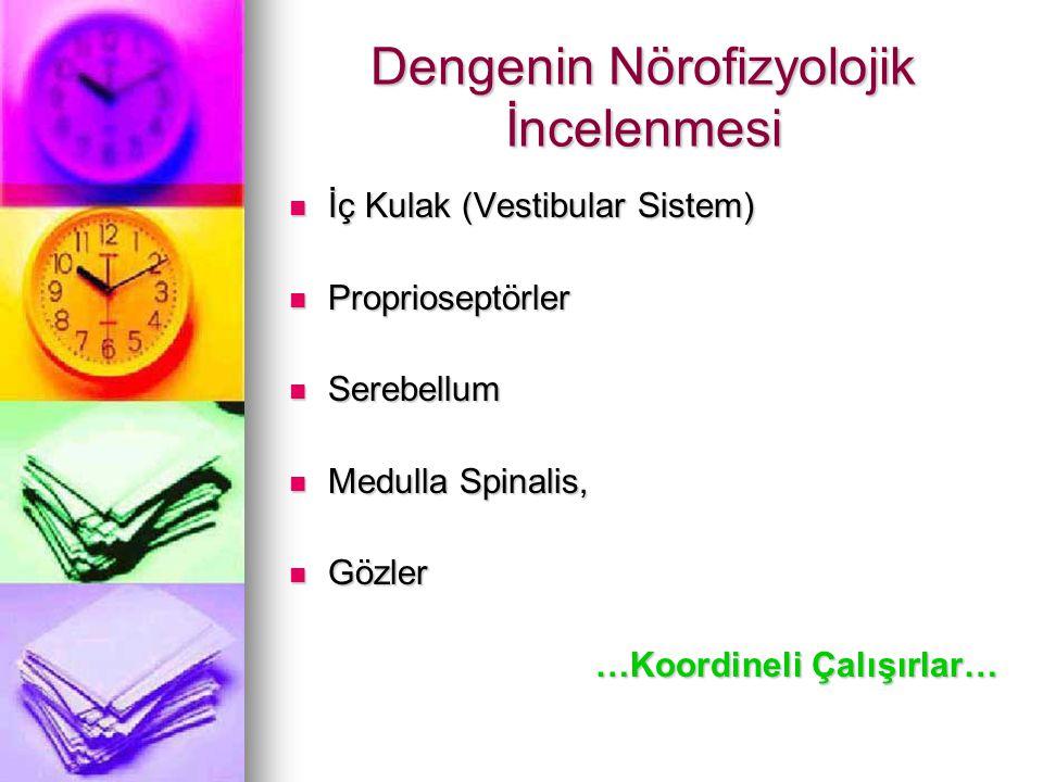 Dengenin Nörofizyolojik İncelenmesi İç Kulak (Vestibular Sistem) İç Kulak (Vestibular Sistem) Proprioseptörler Proprioseptörler Serebellum Serebellum Medulla Spinalis, Medulla Spinalis, Gözler Gözler …Koordineli Çalışırlar…